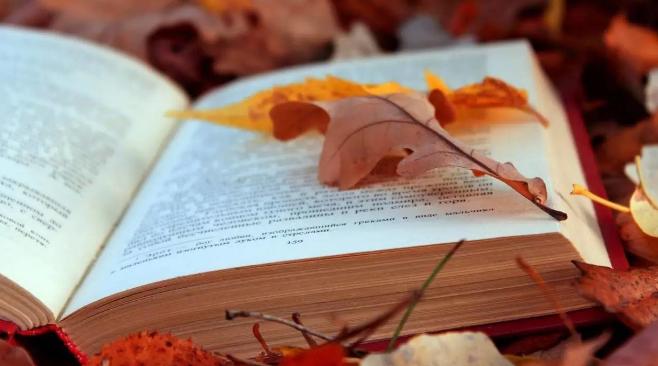 书单|九月新书推荐 | 三联生活周刊